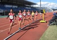 記録会で力走する和歌山北の選手ら