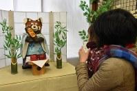 受験生らの応援に登場した「合格祈願パンダ君」。鋭い爪を持ち、木登りが得意で、木から「落ちない」レッサーパンダにあやかった=岡山県の池田動物園で