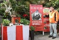 受験生を応援するナマケモノのぬいぐるみと伊藤雅男副園長=長崎県西海市の長崎バイオパークで、今野悠貴撮影
