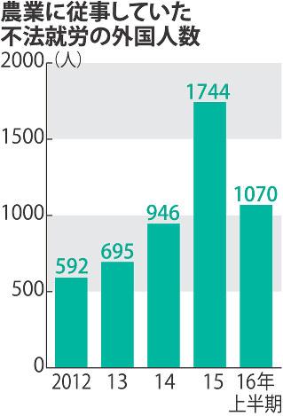 不法就労:農業従事の外国人急増...