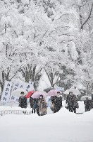 Exam takers in Nagaoka, Niigata Prefecture, are seen walking through the snow on their way to unified university entrance exams, on the morning of Jan. 14, 2017. (Mainichi)