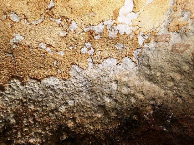 ラスコー 洞窟 壁画