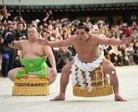 【70代】日馬富士公平=東京都渋谷区の明治神宮で2016年1月7日午後3時半、丸山博撮影