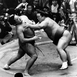 【53代】琴桜傑将(右)=1973年1月21日撮影