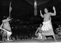 【49代】栃ノ海晃嘉=1967年6月3日撮影