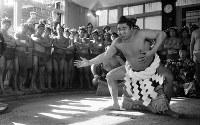 【45代】若乃花幹士(初代)=1958年2月1日撮影