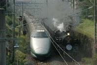 並走する山形新幹線「つばさ」と蒸気機関車=山形市霞城町の霞城公園