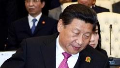 中国の習近平国家主席=2015年4月(バンドン会議事務局提供)