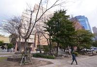 (10)大クスノキで知られた国泰寺の跡地にはホテルが建ち、愛宕池跡(手前)だけが往時をしのばせる=広島市中区で2017年2月6日、山田尚弘撮影