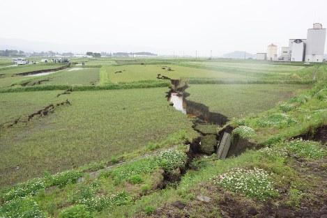 熊本地震の揺れで地層が水平に移動したことで生じた亀裂=熊本県阿蘇市で2016年5月8日、辻准教授提供