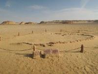 エジプト中部ファイユーム郊外にあるワディ・アル・ヒタン。手前はクジラの祖先バシロサウルスの化石=秋山信一撮影