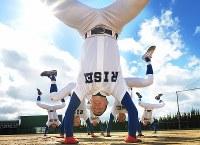 体幹を鍛えるため、動物の動きをまねる「クリーチャートレーニング」に取り組む履正社の選手たち=大阪府茨木市で2017年2月12日、平川義之撮影