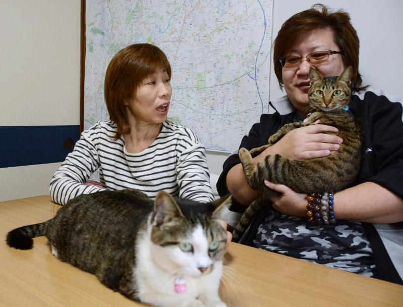 大震災6年:避難先の熊本でも 福島の夫婦、苦難の日々 - 毎日新聞