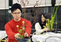「池坊ビギナーズレッスン」に参加し、真剣な表情で花を生ける参加者たち=京都市中京区の池坊会館で、小松雄介撮影