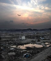 2011年6月の南三陸町=宮城県で2011年6月10日、梅村直承撮影