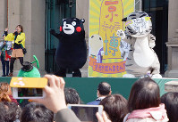 熊本県の「くまモン」(左)と踊る京都国立博物館の公式キャラクターの「トラりん」=京都市東山区の京都国立博物館で、花澤葵撮影