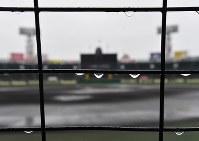 雨で試合が中止となった阪神甲子園球場=2017年3月21日午前7時28分、宮間俊樹撮影