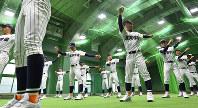 練習前に体をほぐす滋賀学園の選手たち=阪神甲子園球場で2017年3月21日、宮間俊樹撮影