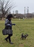 「犬のため」の散歩が飼い主の健康にもつながる=東京都江東区の木場公園で