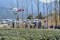 水を噴霧しながら茶畑の上を飛ぶドローン=南部町本郷で