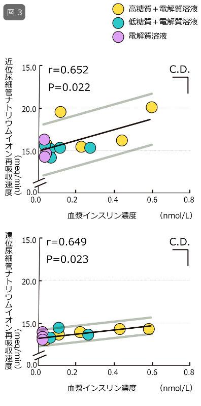 図3:体重の2%の脱水後、3種類の飲料を摂取した際の血漿インスリン濃度に対する腎臓の近位尿細管(上図)、遠位尿細管(下図)におけるナトリウムイオンの再吸収速度を示す。灰色のラインは回帰式の95%信頼限界を示す。C.D. (critical difference) は、X軸、Y軸でバーの長さ以上に各データポイントが離れていればP<0.05のレベルで有意差のあることを示す。Kamijo et al.: Enhanced renal Na+ reabsorption by carbohydrate in beverages during restitution from thermal and exercise-induced dehydration in men. Am. J. Physiol. 303: R824-R833, 2012.