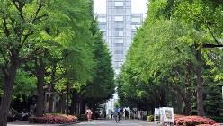 青学大キャンパスから青山通り方面を望む