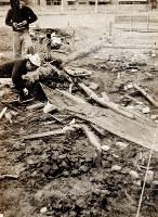 1960年当時の笠嶋遺跡発掘調査の作業写真。海から押し寄せたとみられる石や木材などが散乱している=同志社大歴史資料館提供
