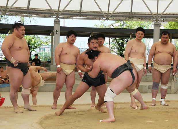 相撲道教室:力士とぶつかり稽古 和歌山RC80周年記念 /和歌山 ...