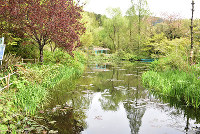 モネ代表作の「睡蓮(すいれん)」をテーマとした水の庭=高知県北川村野友甲のモネの庭マルモッタンで、松原由佳撮影