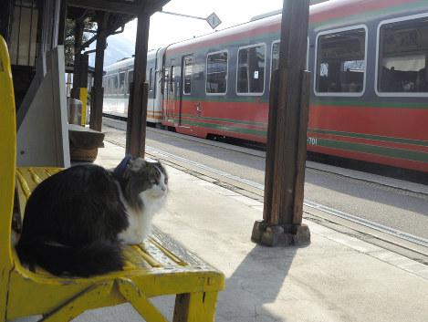 名誉駅長として列車を見送る「らぶ」
