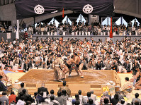 今年も満員御礼になった大相撲の藤沢巡業