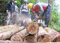 今年5年目を迎えた森普請プロジェクト。参加者の技術も向上している=茨城県の筑波山麓で昨年10月
