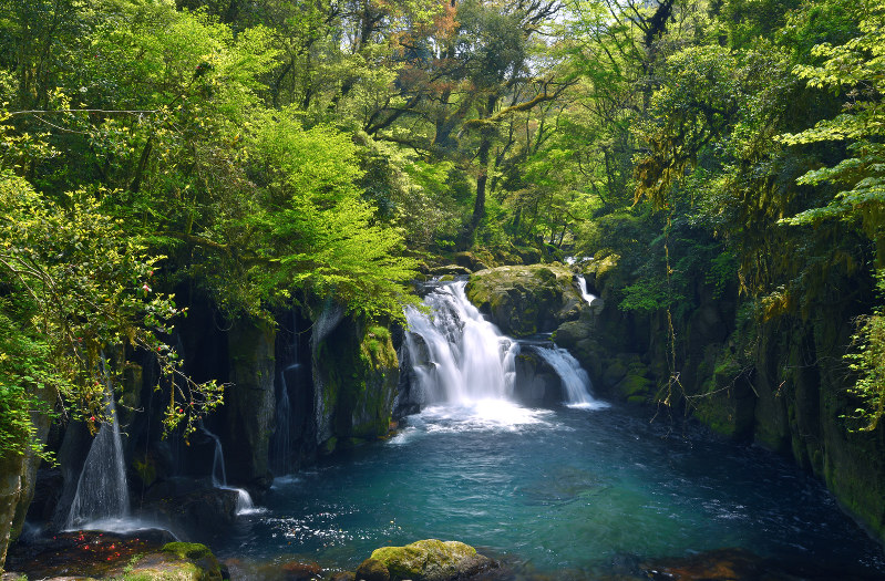 新緑の輝き、変わらず 熊本・菊池渓谷アクセスランキング編集部のオススメ記事