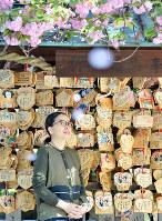 心中の現場・露天神社を訪れた酒井順子さん。事件当時も八重桜が見ごろだったのか=大阪市北区で、猪飼健史撮影