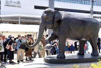 A new statue honoring the Asian elephant
