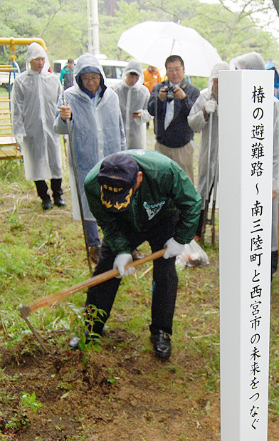 ツバキの苗を植えるメンバー=宮城県南三陸町で、西宮ロータリークラブ提供