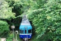 新緑の中を抜けてくる列車。まるで森の中を走っているよう=千葉県銚子市の銚子電鉄本銚子駅近くで、小松やしほ撮影