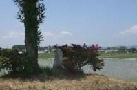 有明の爆撃跡地に建てられた、犠牲者を悼む石碑。「遭難記念」と刻まれている=安曇野市穂高有明で