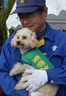 小型犬として茨城県警初の嘱託警察犬なったトイプードルの「アンズ」と指導士の鈴木博房さん=茨城町上石崎の県警察学校で2016年1月15日午前10時33分、松本尚也撮影