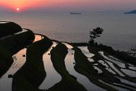 若狭湾から昇る朝日の光を受けて浮かび上がった「新井の棚田」=京都府伊根町で、小松雄介撮影