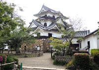 戦国時代の息吹を今に伝える彦根城の天守=滋賀県彦根市で、玉木達也撮影