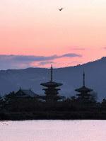 夜明けの薬師寺=奈良市西の京町で2009年3月、西村剛撮影