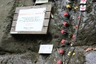 地層地点を示す黄、赤の識別用のくいと上下の矢印=2017年5月28日、海老名富夫撮影