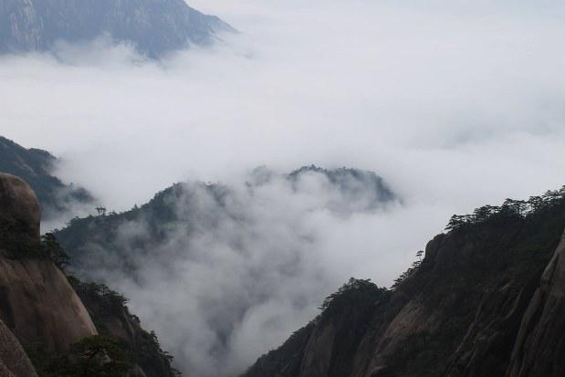 中国の契約茶畑は世界遺産の黄山付近にある