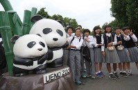 Junior high school students pose for photos next to a panda statue at Ueno Zoological Gardens in Tokyo's Taito Ward on June 13, 2017, the day after a panda at the zoo gave birth to a cub. (Mainichi)