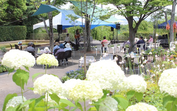 花畑 園芸 公園