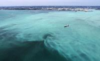 東京湾で発生した青潮。沖縄の海のような明るい乳白色をしている=千葉市沖で2017年6月19日午後1時50分、本社ヘリから長谷川直亮撮影