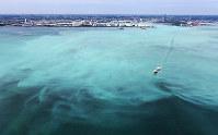 東京湾で発生した青潮。沖縄の海のような明るい乳白色をしている=千葉市沖で2017年6月19日午後1時51分、本社ヘリから長谷川直亮撮影