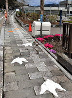 町道の歩道に描かれた恐竜の足跡=北海道むかわ町穗別で福島英博撮影
