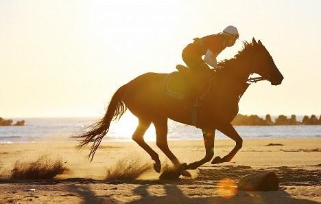相馬野馬追に向けて早朝から砂浜を駆ける馬=福島県南相馬市で2017年6月17日午前4時48分、喜屋武真之介撮影
